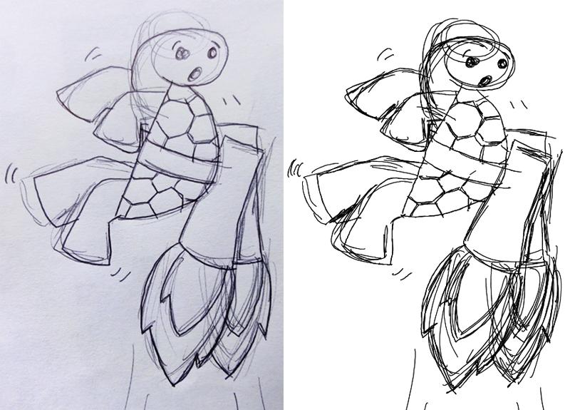 Tortoise sketch