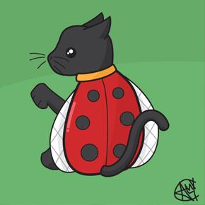 ladybird-cat