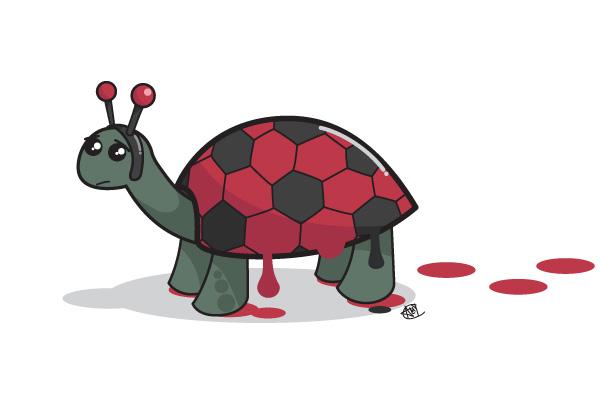 Ladybird Tortoise