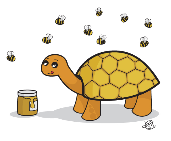Honeycomb Tortoise