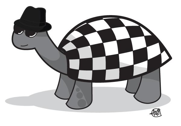 Two-Tone Tortoise