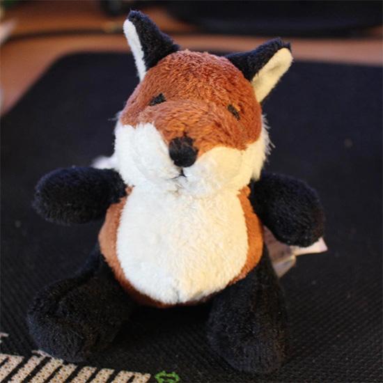 'Real life' chubby fox