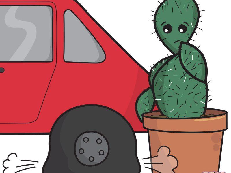 Cactus Comic – Flat Tyre