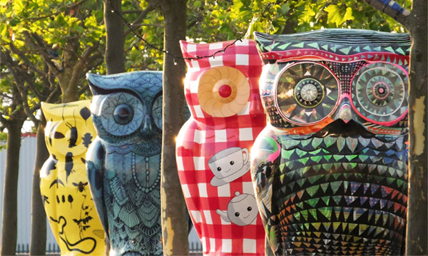 The Big Hoot owls