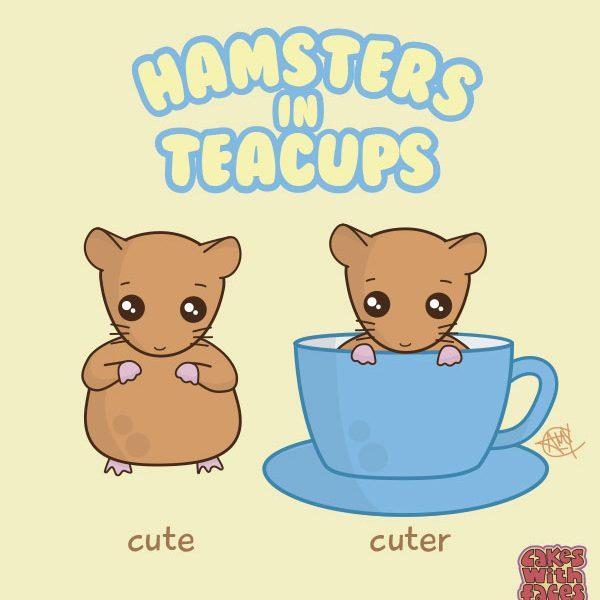 Hamsters in Teacups