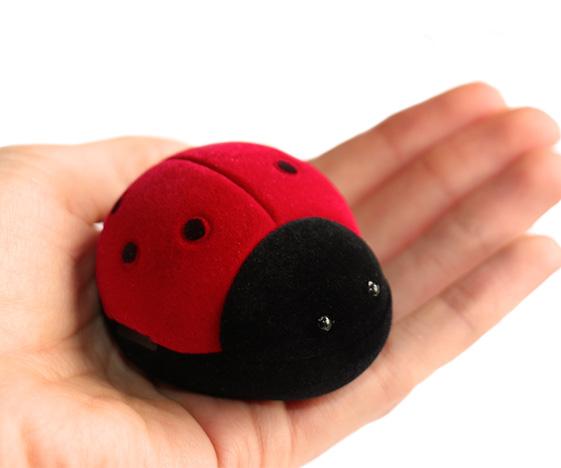 Ladybird box