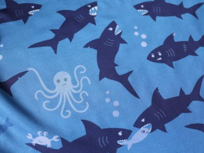Shark Gifts: Christmas Presents for Shark Lovers & Marine Biologists