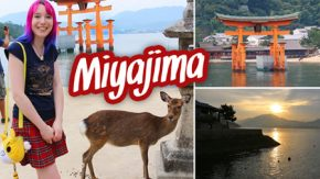 miyajima-video