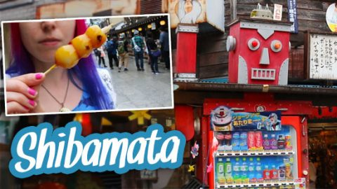 shibamata-video